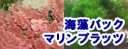 海藻パック